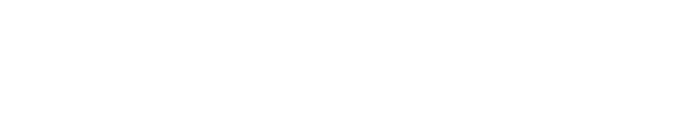Félix Luginbühl | Data Analytics